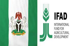 FG/IFAD programme to support 616 farmers with N26m inputs in Niger