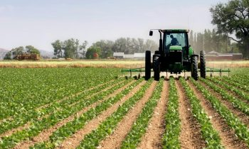 Kwara key to Agricultural value chain, begins farmers digital census